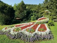 Mönichwalder Blumenpfau